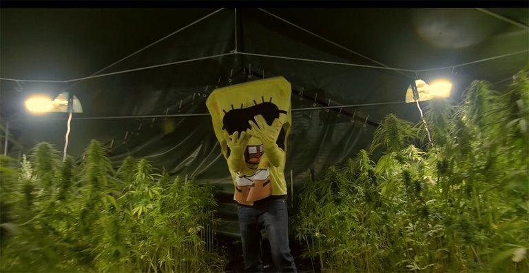 Spongebozz 6