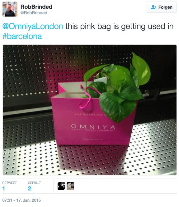 Aus einer rosa Geschenkttüte guckt eine Pflanze