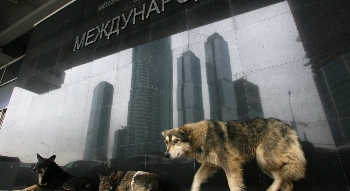 Woher Kommt Das Bild Von Den Angeblich In Russland Für Die Wm