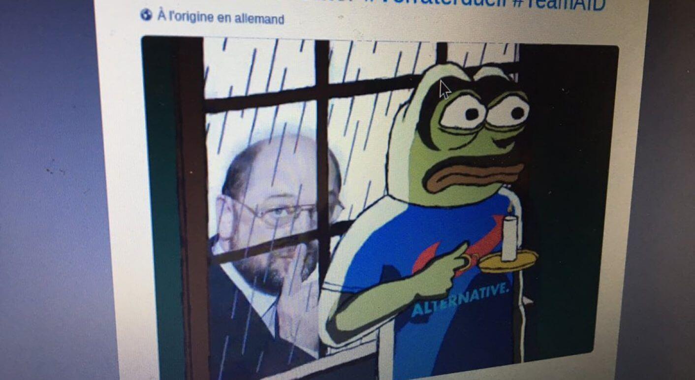 Frosch Profilbild
