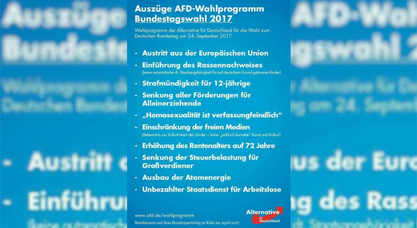 AfD Colllage Wahlprogramm