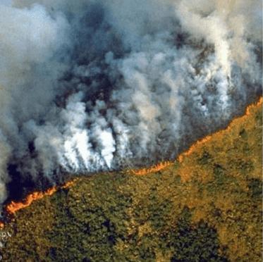 Nein, diese Bilder zeigen nicht die aktuellen Brände im Amazonasgebiet