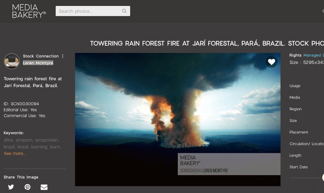 Waldbrände im Amazonas-Gebiet: Von diesen drei angeblichen aktuellen Fotos sind zwei mindestens 16 Jahre alt und eins aus Indien