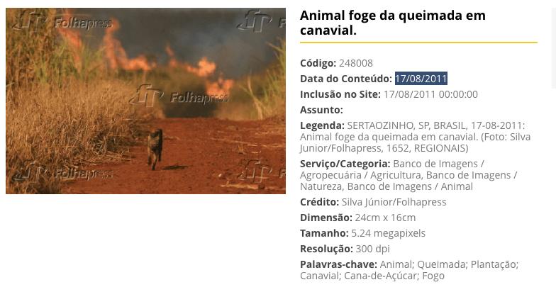 Amazonas-Brände: Nein, diese drei Fotos zeigen nicht die aktuellen Feuer in der Region