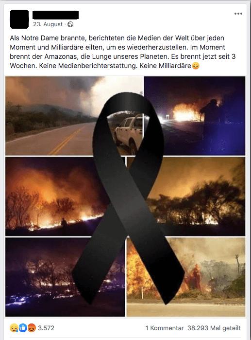 Doch, Medien berichteten über die Brände im Amazonasgebiet