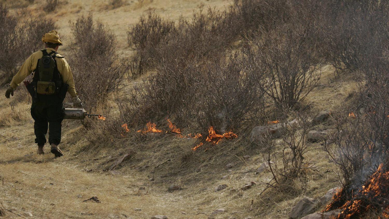 Australien: Nein, die Grünen haben nicht kontrollierte Brände zur Vorbeugung von Buschfeuern gestoppt