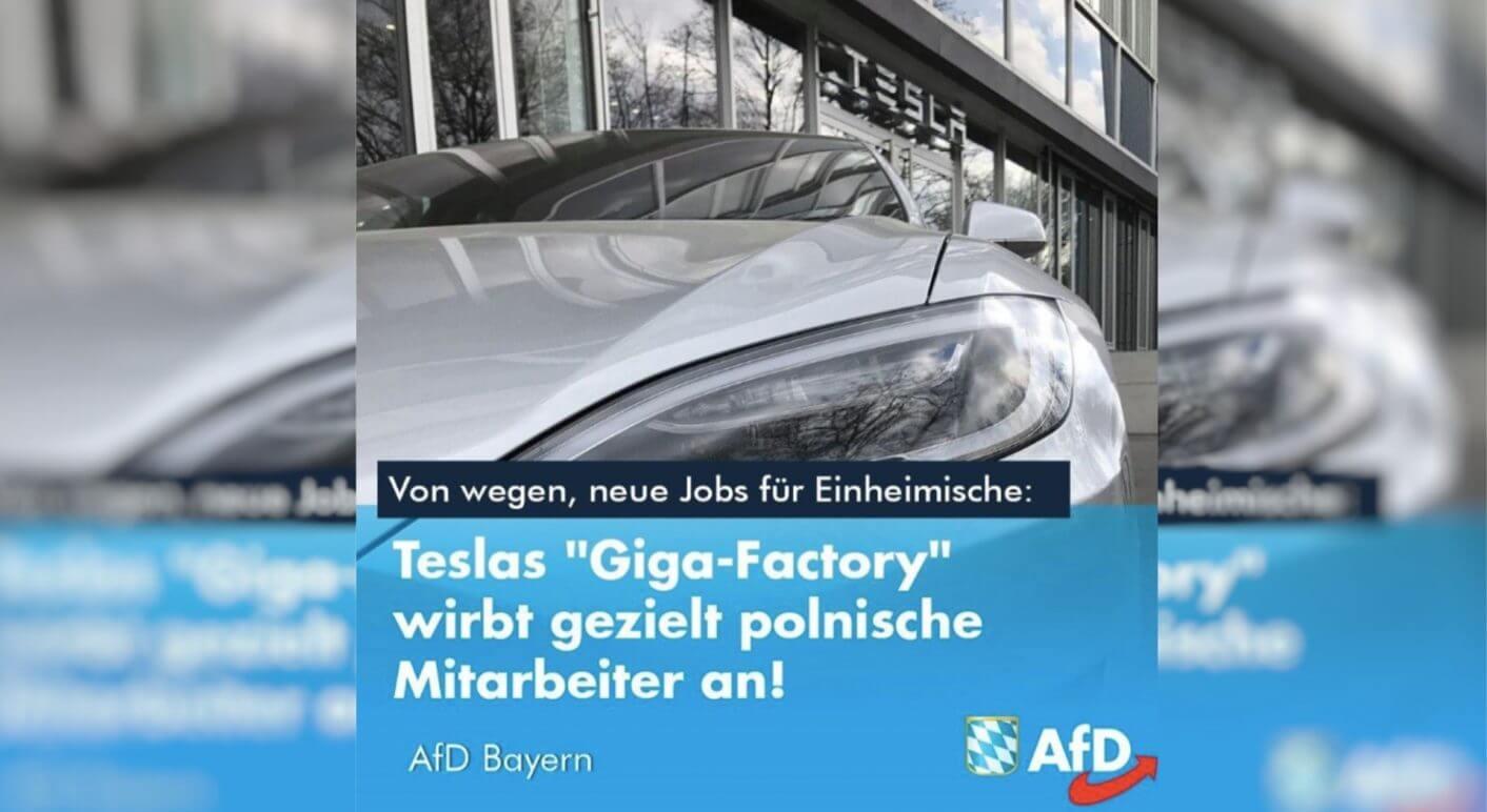 AfD-Tesla