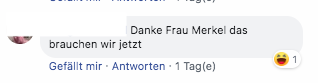 Facebook-Kommentare unter dem Video. (Screenshot: CORRECTIV)