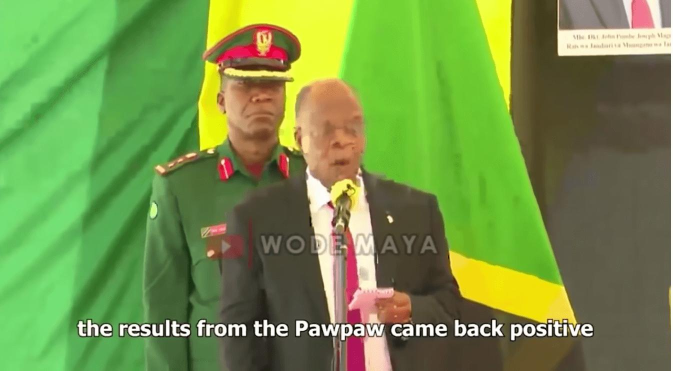 Eine Papaya hat Corona? Das hat Tansanias Präsident John Magufuli behauptet.