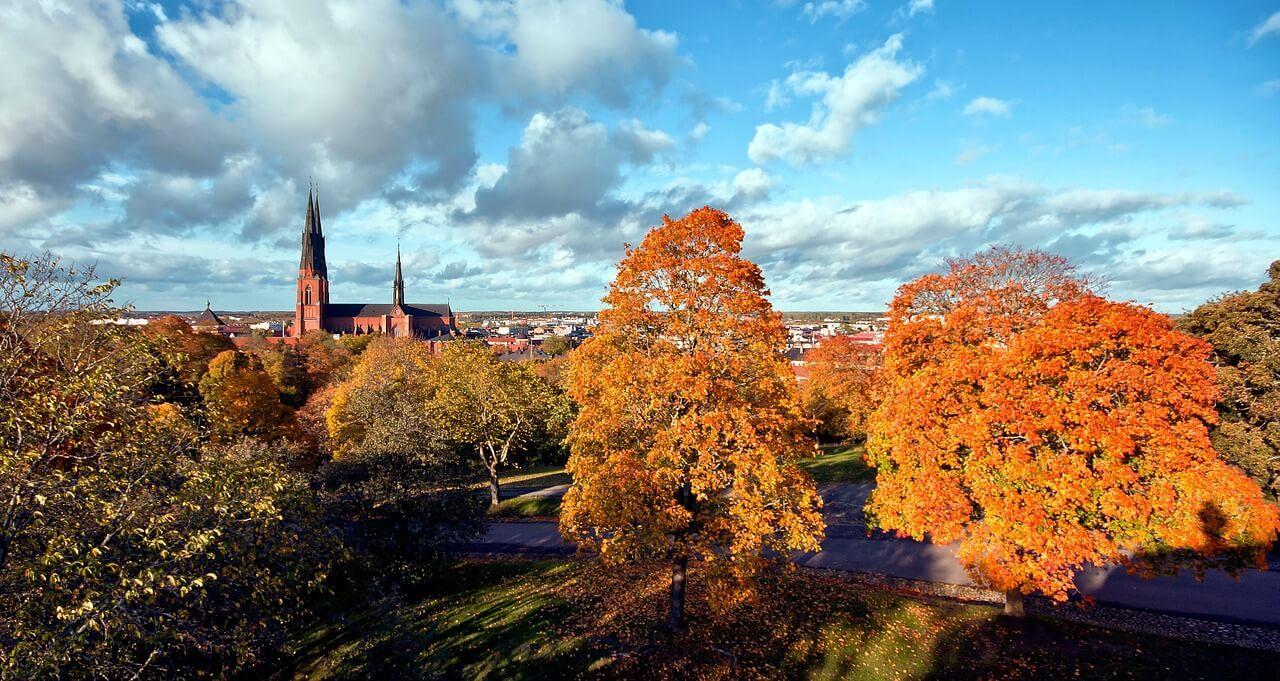 Corona: Irreführende Behauptungen über Todesfall-Statistik in Schweden