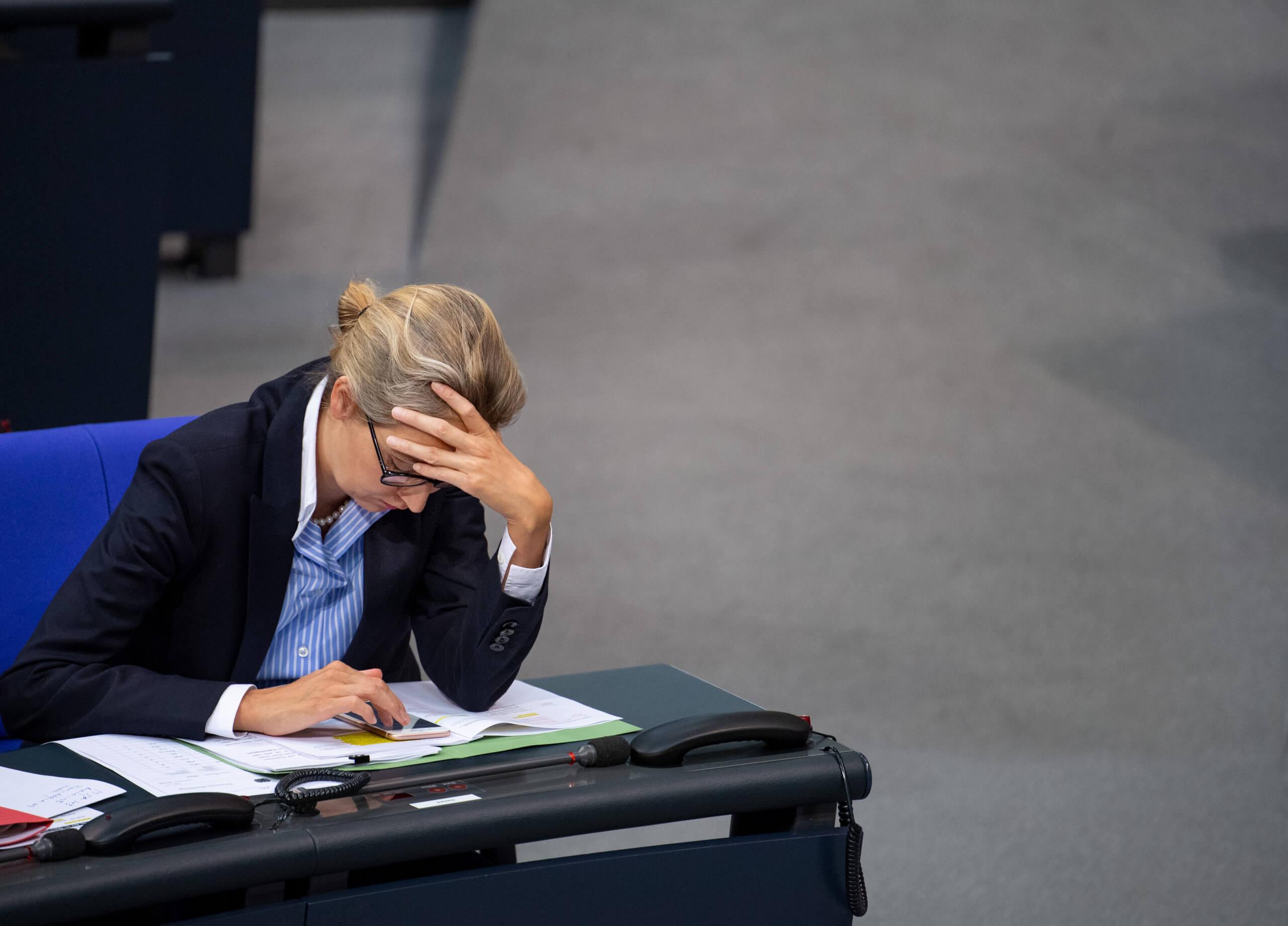 Weidel-Kreisverband überwies Geld an umstrittenen Berater